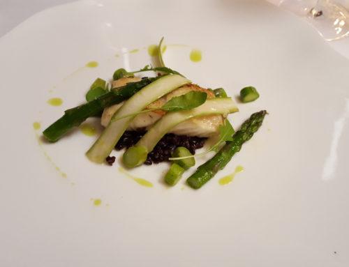 Fisch Mar Ligure – schwarzer Reis – grüner Spargel
