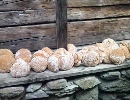 Frisches Brot aus eigener Herstellung